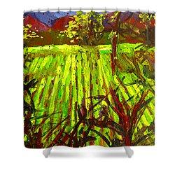 Endless Vineyards Shower Curtain by Patricia Awapara