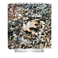 Shower Curtain featuring the photograph Endurance Of A Leaf by Kay Gilley