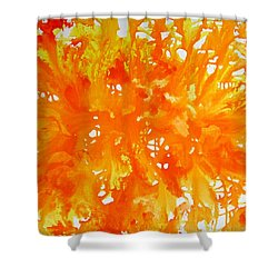 Energy Burst Shower Curtain
