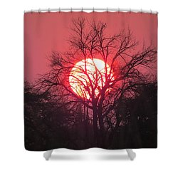Engepi Sunset Shower Curtain