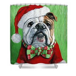 Holiday Cheer -english Bulldog Santa Dog Painting Shower Curtain