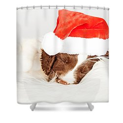 English Springer Spaniel Puppy Wearing Santa Hat While Sleeping Shower Curtain