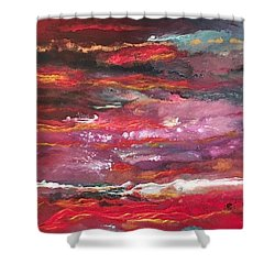 Enigma 2 Shower Curtain