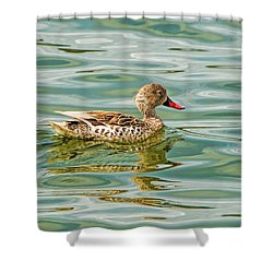 Enjoying Shower Curtain by Pravine Chester