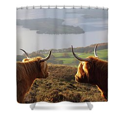 Enjoying The View - Highland Cattle Shower Curtain