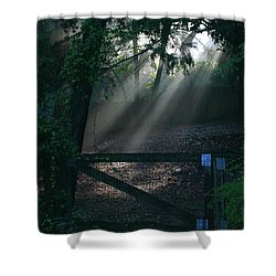 Shower Curtain featuring the photograph Enlighten by Lori Mellen-Pagliaro