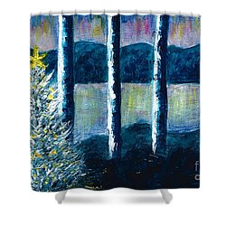 Enlightened Forest  Shower Curtain