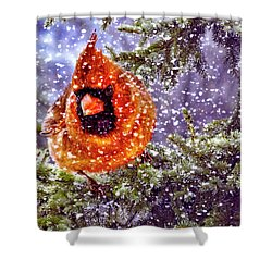 Enough Of This White Stuff Shower Curtain by Diane Schuster