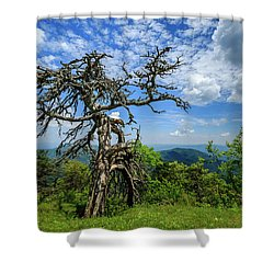 Ent At The Top Of The Hill - Color Shower Curtain