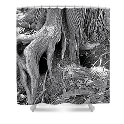 Ent Foot Shower Curtain
