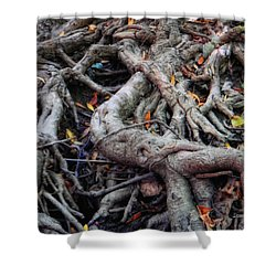 Entanglement Shower Curtain by Donna Blackhall