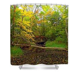 Shower Curtain featuring the photograph Enter Autumn by Viviana  Nadowski