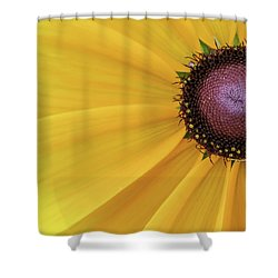 Shower Curtain featuring the photograph Enter Stage Left by David Coblitz