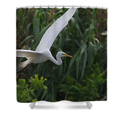 Enter The Great Egret 5 Digitalart Shower Curtain