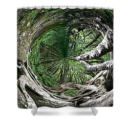 Shower Curtain featuring the photograph Enter The Root Cellar by Gary Smith