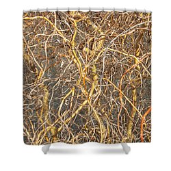 Entrelacs 2 Shower Curtain