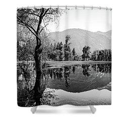 Ephemeral Shower Curtain by Ryan Weddle