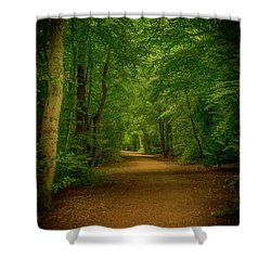 Epping Forest Walk Shower Curtain by David French