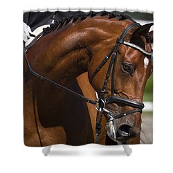 Equestrian At Work Shower Curtain by Wes and Dotty Weber