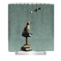 Equilibrium Vi Shower Curtain