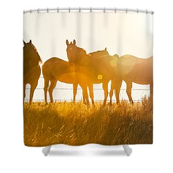 Equine Glow Shower Curtain by Todd Klassy