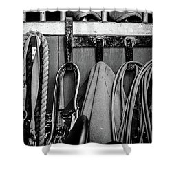 Equine Life Shower Curtain