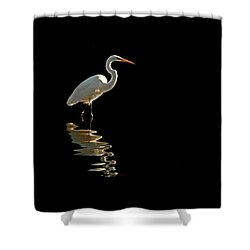 Ergret Reflecting Shower Curtain
