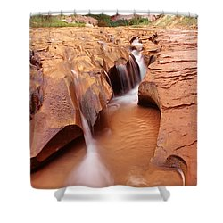 Eroded Streambed, Coyote Gulch Shower Curtain