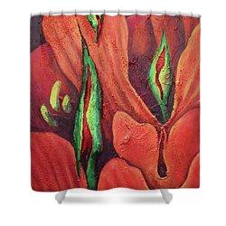 Erotocactus Shower Curtain