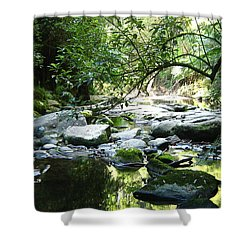 Erskine River Shower Curtain
