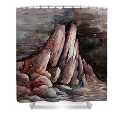 Eruption Shower Curtain by Rachel Christine Nowicki
