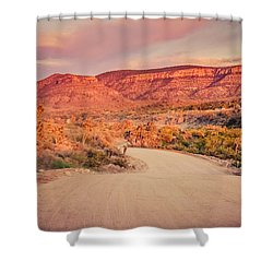 Eruptions On The Sun Shower Curtain