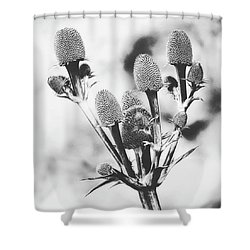 Eryngium #flower #flowers Shower Curtain