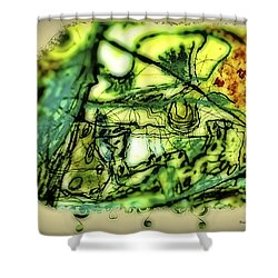 Escape The Whirlwind-2015 Shower Curtain