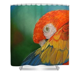Escondida Shower Curtain