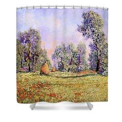 Esercizi Impressionisti Shower Curtain