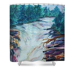 Esopus Creek Shower Curtain by Ellen Levinson