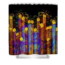 Essence De Lumiere Shower Curtain