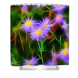 Essence Of Asters Shower Curtain