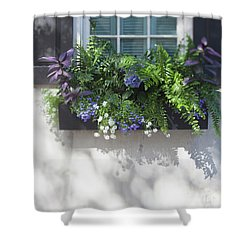 Essence Of Charleston Shower Curtain