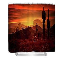 Shower Curtain featuring the photograph Essence Of The Southwest - Square  by Saija Lehtonen