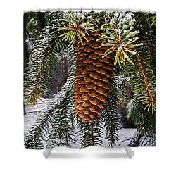 Essence Of Winter  Shower Curtain