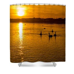 Estuary Sunset Shower Curtain
