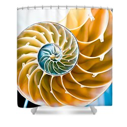 Eternal Golden Spiral Shower Curtain by Colleen Kammerer