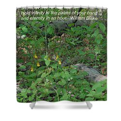 Eternity In An Hour Shower Curtain
