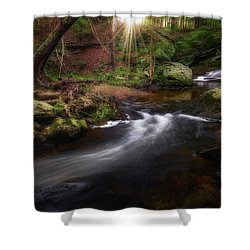 Shower Curtain featuring the photograph Ethereal Morning 2017 by Bill Wakeley
