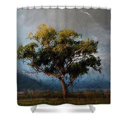 Eucalyptus Shower Curtain