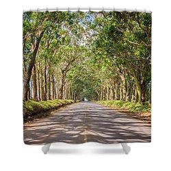 Eucalyptus Tree Tunnel - Kauai Hawaii Shower Curtain by Brian Harig