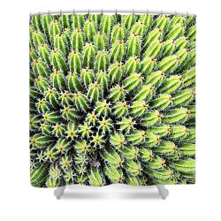 Euphorbia Shower Curtain by Delphimages Photo Creations