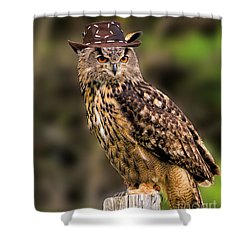 Eurasian Eagle Owl With A Cowboy Hat Shower Curtain by Les Palenik